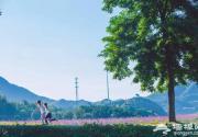 延庆万亩四季花海盛放,艳遇北京的小普罗旺斯