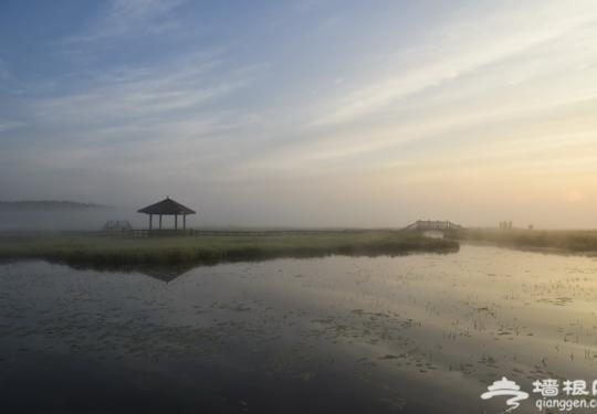 塞罕坝:离北京最近的草原 相机也无法记录它的美