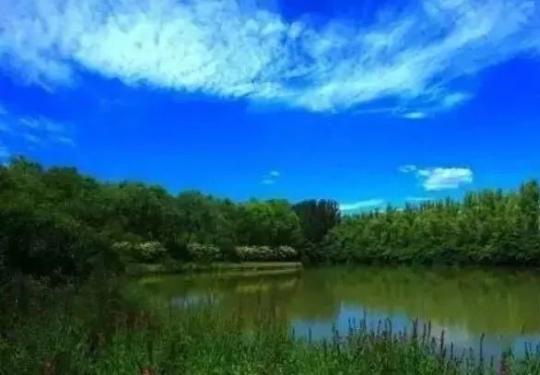北京湿地公园哪个最美最好玩?秋光正好一起去看看吧!