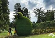 辰山植物园将举办2018辰山秋韵花果展 国庆期间可观赏