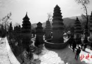 忽必烈女儿在京西潭柘寺出家 塔林中虎塔葬的是只吃素老虎?