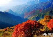 2018北京坡峰嶺紅葉節門票價格、種類及購買入口