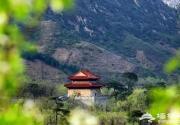 第十五届温泉文化节开幕,活动丰富多彩