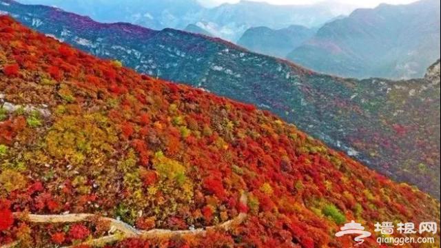 10月北京最佳小众旅行地!绝不能错过的秋色,到底有多美?