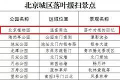 """北京15家""""落叶缓扫""""公园名单一览 赏彩叶延至11月下旬"""