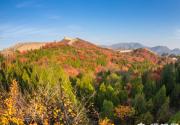 京郊赏红叶,漫山遍野一片红!