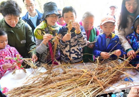 海淀公园第十五届收割节在御稻流香景区举办