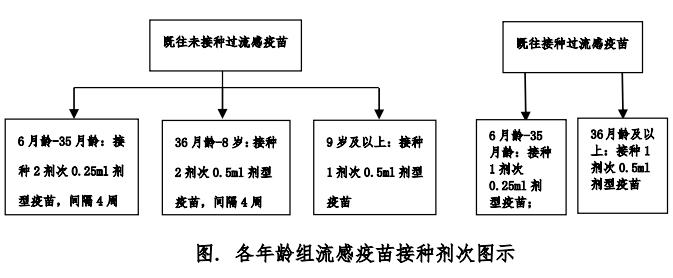 中国流感疫苗预防接种技术指南(2018-2019)