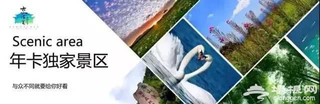 《2019年京津冀名胜文化休闲旅游年卡》景区名录(使用时间+景点介绍)[墙根网]