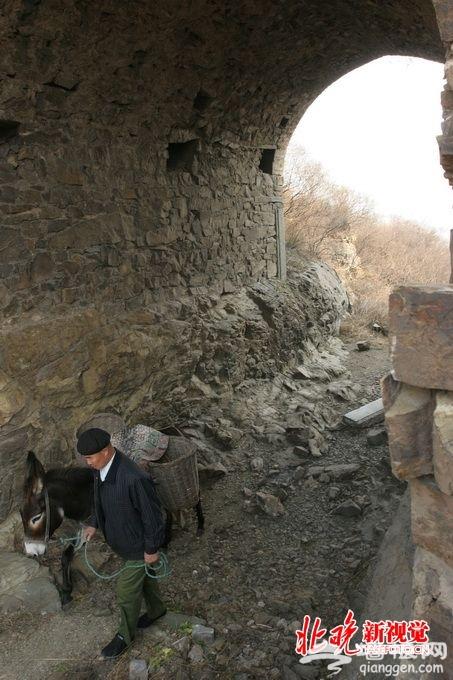 北京门头沟将建古生物化石展览馆 加大生态和科普资源的保护利用