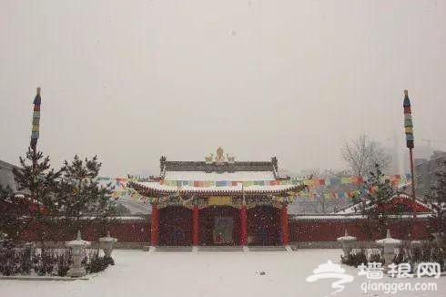 西安哪些寺庙赏雪好看