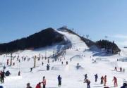 蓟县玉龙滑雪场11月24日正式开放 特价14.9元抢原价60元滑雪票