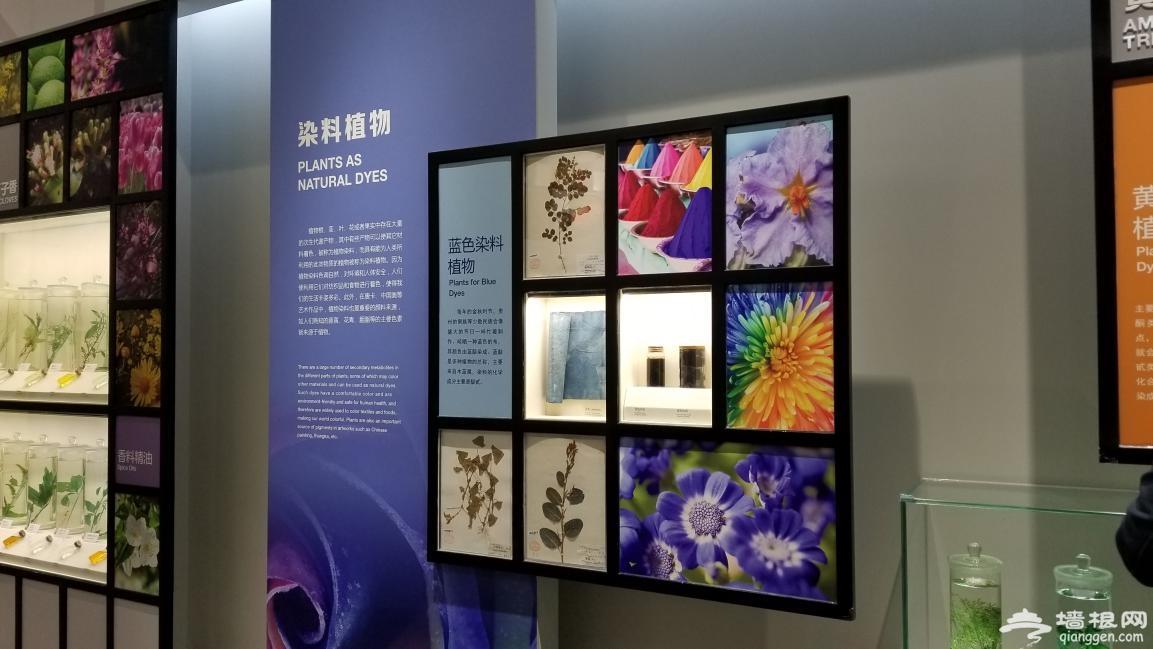 北京自然博物馆一日游,其实大人也应该来看看[墙根网]
