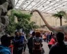 北京自然博物馆一日游,其实大人也应该来看看