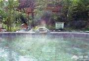 离北京最近的碳酸型温泉,冬日泡汤度假首选!