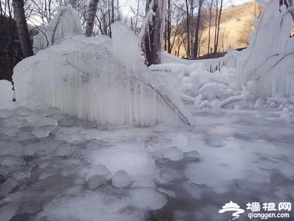 罕见雪景!不用去哈尔滨,延庆这个地方的冰瀑美到爆![墙根网]