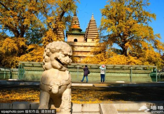 北京这些博物馆:让你了解古代石刻、建筑和木作