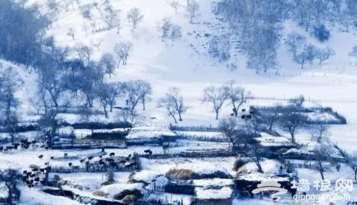 河北这些地儿即将迎来冬游佳期,不可错过![墙根网]