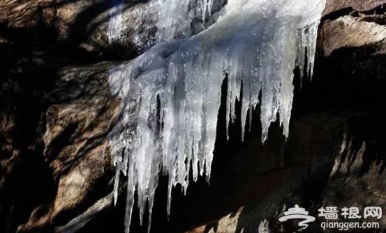 北京冬天去哪里看冰瀑?来这几个地方就够了[墙根网]