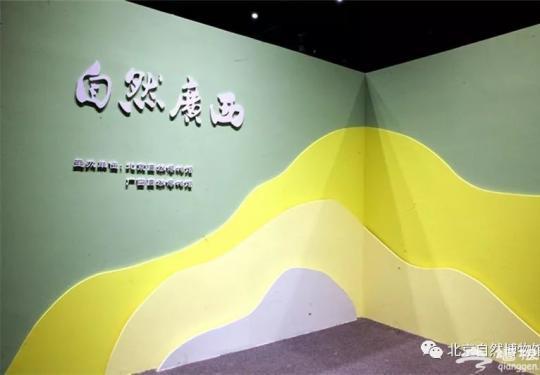 """北京自然博物馆""""自然广西""""展览时间、门票预约"""