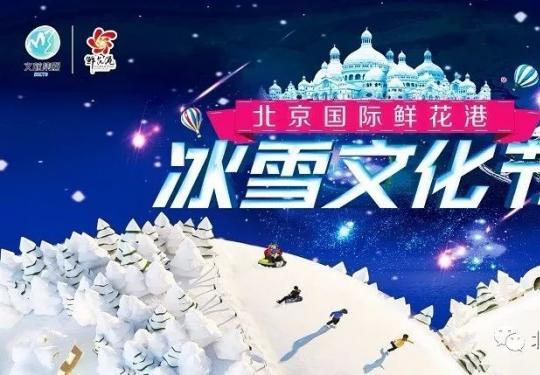 2019北京国际鲜花港冰雪文化节开幕