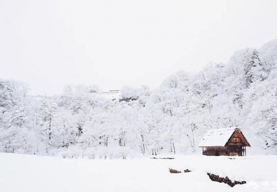 冬至三候 除了祭祖冬至还有哪些习俗