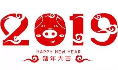 2019上海嘉定全区各大迎新跑路线汇总