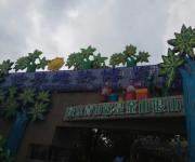南宫五洲植物园