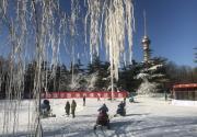 北京玉淵潭公園冰雪季試開放 還特別開辟兒童滑雪專區