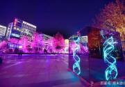 2019北京燈光秀