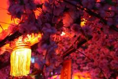 2020北京庙会