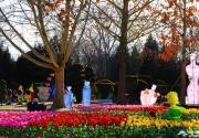 """北京世界公園舉辦""""2019新春花燈大拜年""""游園活動(時間+內容)"""