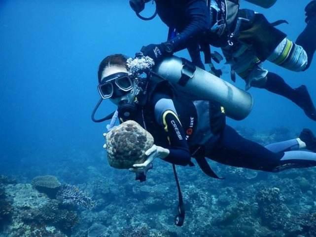 潜水运动安全吗 潜水新手容易犯的错误有哪些