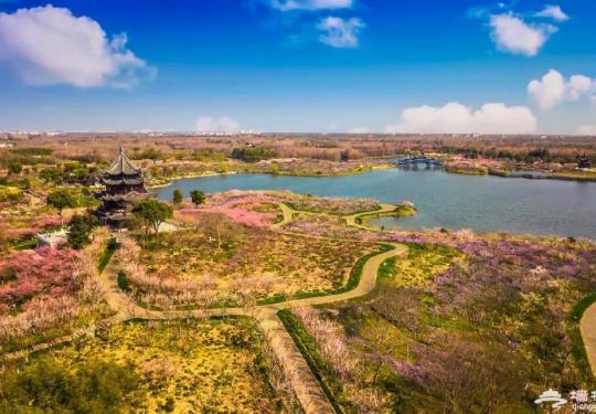 上海海湾国家森林公园四季赏花指南(附游园攻略+门票价格+交通指南)