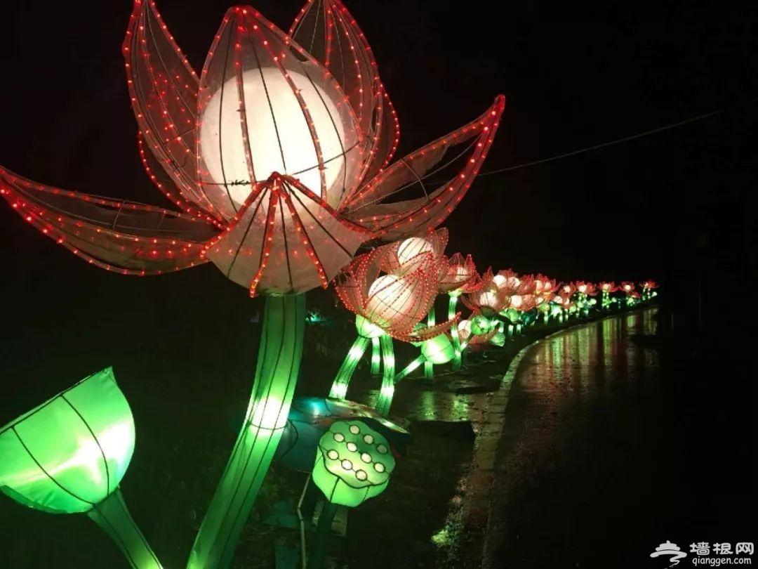 2019吴桥杂技国际灯会举办时间、地点、亮点[墙根网]