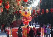 """2019地坛庙会 吉祥物""""金猪欢欢""""亮相"""