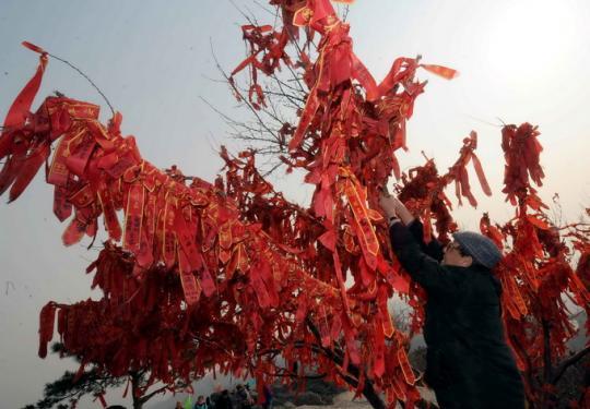 香山公园今起举办春节登高祈福会 游客可参与福猪陶泥制作等活动