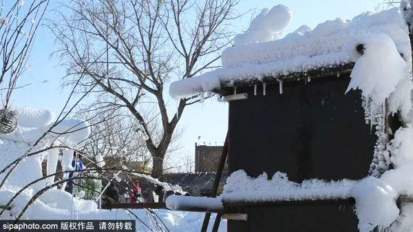 三里河冰雪乐园免费!北京闹市又多了一个冰雪世界[墙根网]
