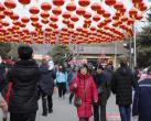 2019第六届八大处新春祈福庙会大年初一迎客