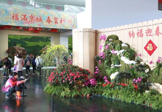 """去中国园林博物馆""""纳福迎春"""""""