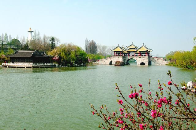 初春来了!上海周边5大最佳踏青地,拍照赏花海,高铁2h直达![墙根网]
