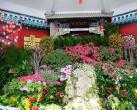 2019北京中山公园唐花坞、蕙芳园室内花展活动时间内容详情