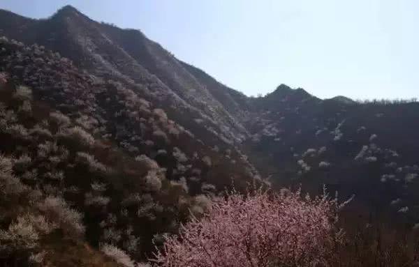 """距京1.5h,北京周边竟藏了一处""""人间仙谷"""",看上一眼你就会爱上她!"""