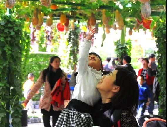 感受自然多彩魅力,第七屆北京農業嘉年華即將開幕![墻根網]
