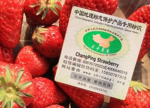 感受自然多彩魅力,第七届北京农业嘉年华即将开幕![墙根网]