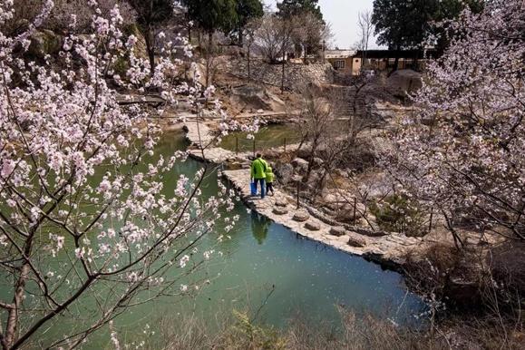 春风拂面,与京郊花海来场浪漫邂逅吧[墙根网]