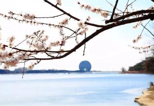 3月16日雁栖湖景区女士入园免票啦