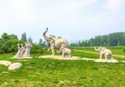 京郊公園踏青,賞美景享愜意生活