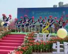 2019上海新湖郁金香花博会时间、地点