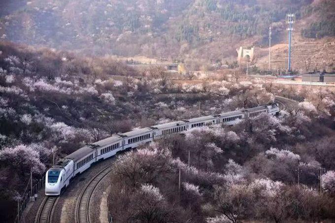 """北京居庸关S2线观景台将部分完工,可远眺""""开往春天的小火车""""[墙根网]"""